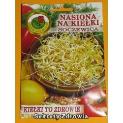 Nasiona na kiełki - Soczewica